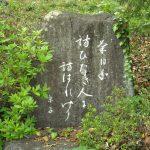 菊日和訪ひたき人に訪はれけり 吉田京子