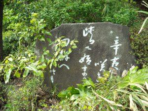 辛夷咲き峡に始まる田拵へ 山岸吟月