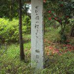 でびら図の祝ぎをるごとし梅匂ふ 久保島たかし