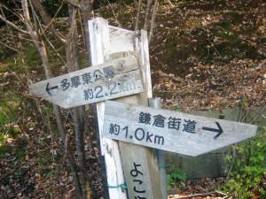 黒川の里山散策(すこやか活動) 040