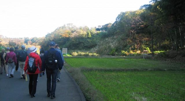 黒川村を歩く 20121118 016