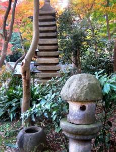 秋の三景園20131203 175
