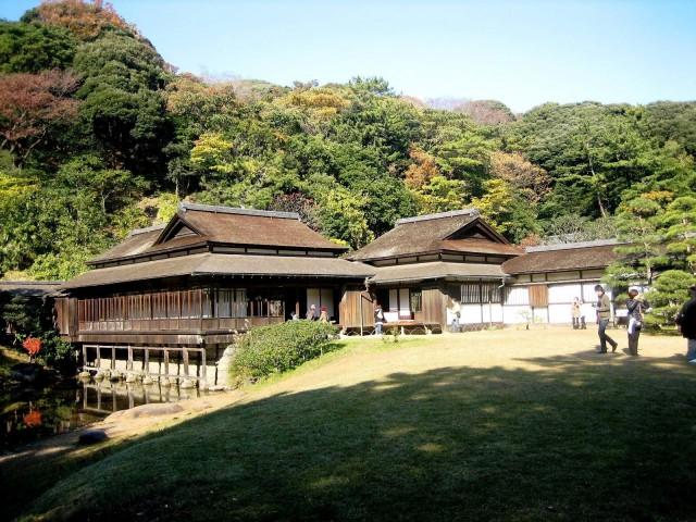 秋の三景園20131203 061