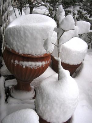 雪の庭② 016