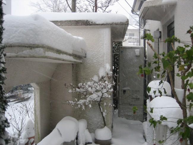 雪の庭② 023
