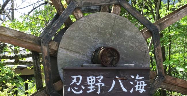 不二の芝桜 060 - コピー